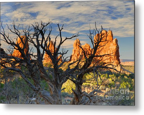 Arches Metal Print featuring the photograph Glove Rock by Dennis Hammer