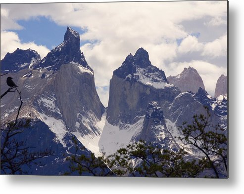 Gray Glacier Metal Print featuring the photograph Gray Glacier Chile by Charles Ridgway