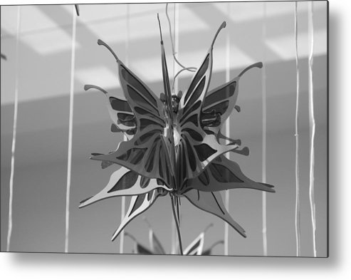 Black And White Metal Print featuring the photograph Hanging Butterfly by Rob Hans
