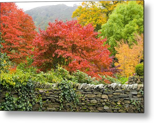 Leaves Metal Print featuring the photograph Incredible Fall Colors by Charles Ridgway