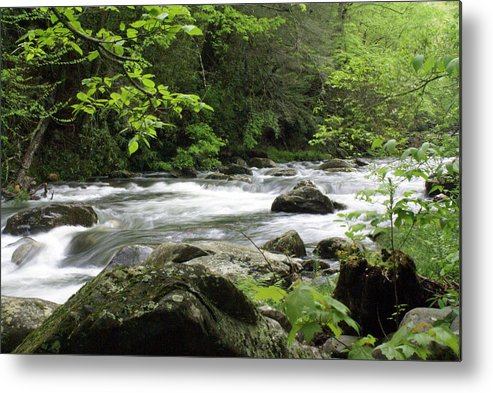 River Metal Print featuring the photograph Litltle River 1 by Marty Koch
