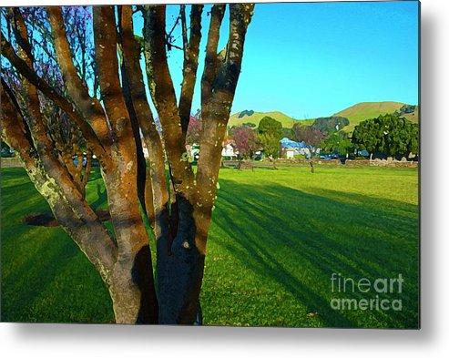 Hawaiian Landscape Metal Print featuring the photograph Morning Shadows In Waimea by Bette Phelan