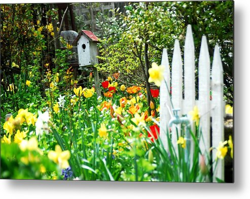 Gardens Metal Print featuring the photograph Must Be Spring ......... by Mario Belluomo