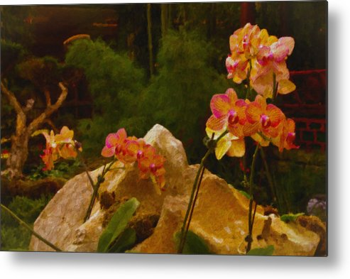 Nature Metal Print featuring the painting Orchids by Stephen Campbell