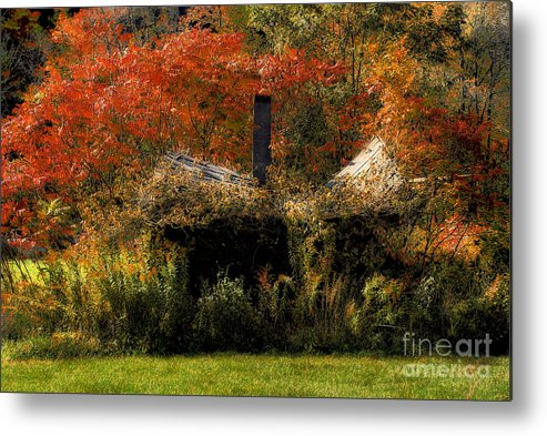 House Metal Print featuring the photograph Ouch by Lois Bryan