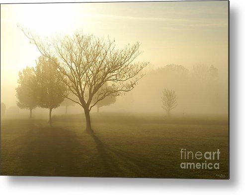 America Metal Print featuring the photograph Ozarks Misty Golden Morning Sunrise by Jennifer White