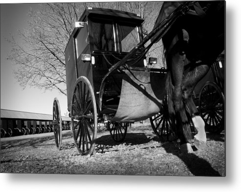 Amish Metal Print featuring the photograph Patience by Kevin Brett