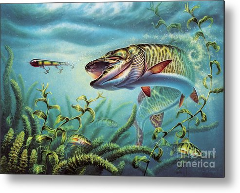 Muskie Metal Print featuring the painting Provoked Musky by JQ Licensing