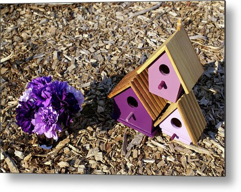 Purple Metal Print featuring the photograph Purple Birdhouses 2 by Douglas Barnett