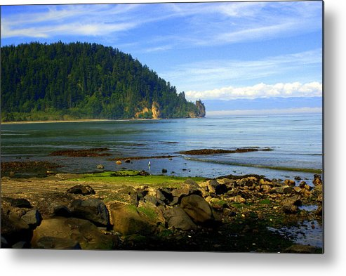 Olympic Metal Print featuring the photograph Quiet Bay by Marty Koch