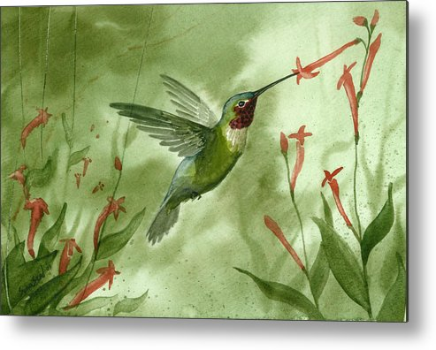 Birds Metal Print featuring the painting Ruby Throated Hummingbird by Sean Seal