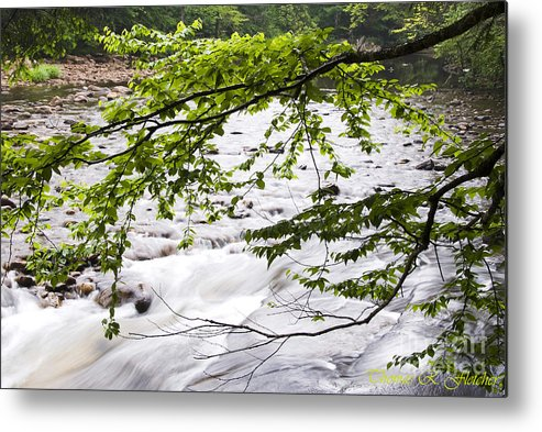 West Virginia Metal Print featuring the photograph Rushing River by Thomas R Fletcher