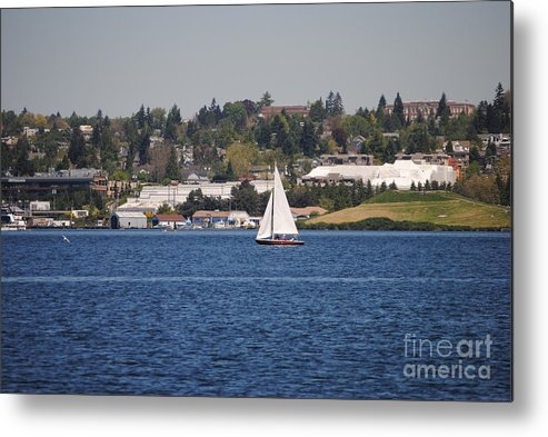Sailing Metal Print featuring the photograph Sailing On Lake Union by Donna Meadows