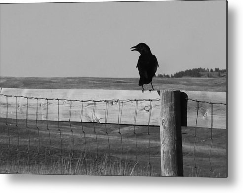 South Dakota Metal Print featuring the photograph Sentinel by Harold Clayberg