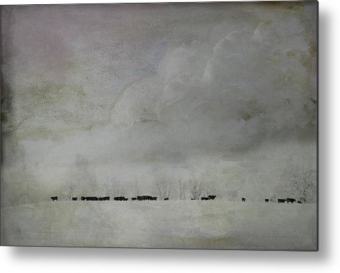 Snow Metal Print featuring the photograph Simplistic Beauty by Kathy Jennings