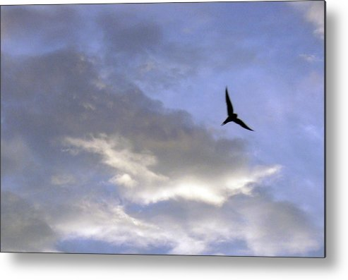 Cloud Metal Print featuring the photograph Sky16 by Mikael Gambitt