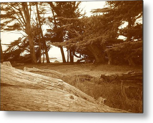 Seascape Metal Print featuring the photograph Sleepy Shore Sepia by Maggie Cruser