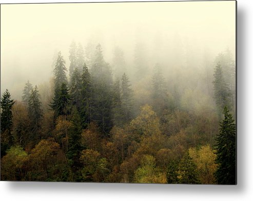 Fog Metal Print featuring the photograph Smoky Mount Horizontal by Marty Koch