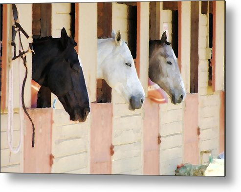 Horse Metal Print featuring the photograph Stable Series by Ellen Lerner ODonnell