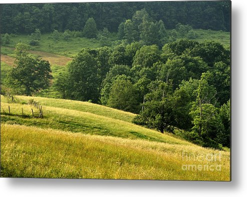 Summer Morning Metal Print featuring the photograph Summer Morning On The Farm by Thomas R Fletcher