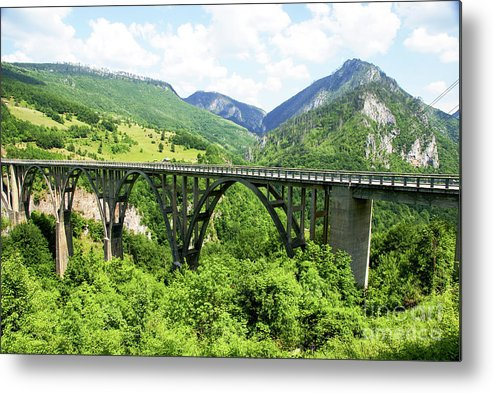 Connections Metal Print featuring the photograph Tara River, Montenegro by Ruth Hofshi