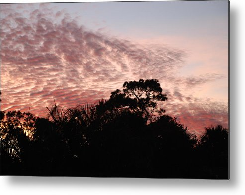 Sky Metal Print featuring the photograph Thanksgiving Sky by Rob Hans