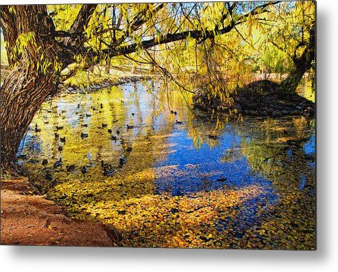 Fall Metal Print featuring the photograph The Autumn Leaves by Tim Reaves