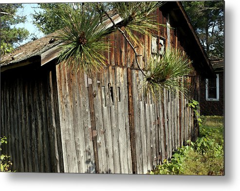 Rural Metal Print featuring the photograph The Old Shed by Ron Read