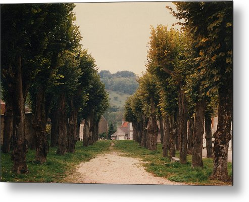 Trees Metal Print featuring the photograph Tree Lined Pathway In Lyon France by Nancy Mueller