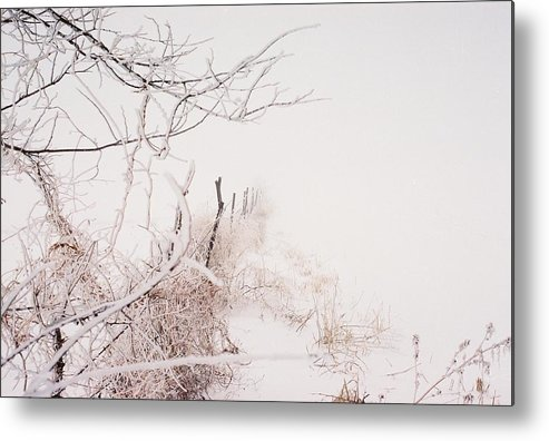 Snow Metal Print featuring the photograph Vanishing by Jennifer Trone