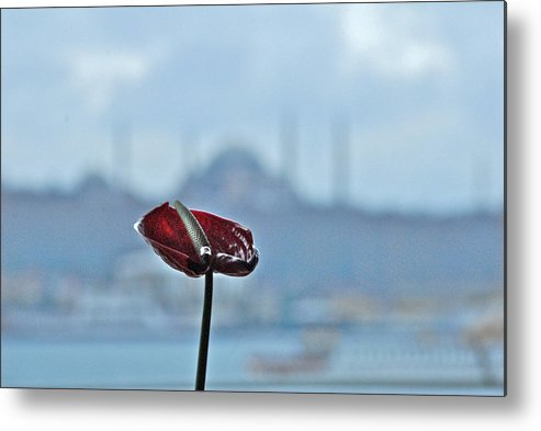 Travel Metal Print featuring the photograph View From Istanbul Modern by Arvind Garg