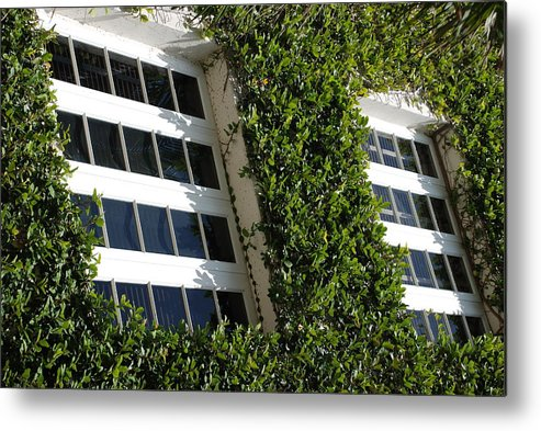 Architecture Metal Print featuring the photograph Vines And Glass by Rob Hans