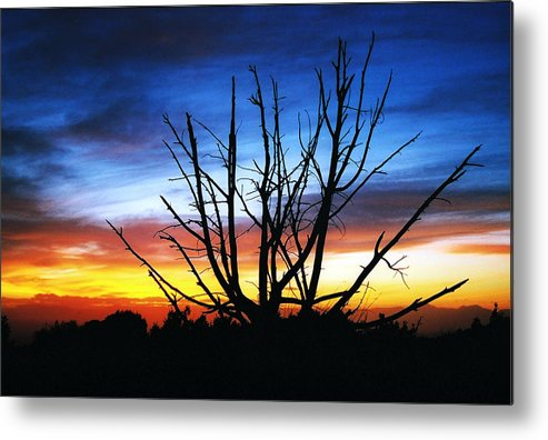 Landscape Sunset Metal Print featuring the photograph Virden Road Watercolor by Brenda Purvis