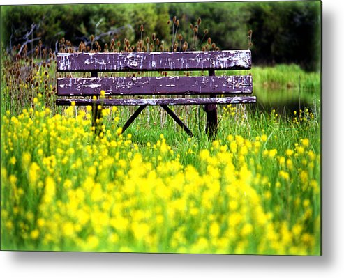 Activity Metal Print featuring the photograph Wooden Bench by Emanuel Tanjala