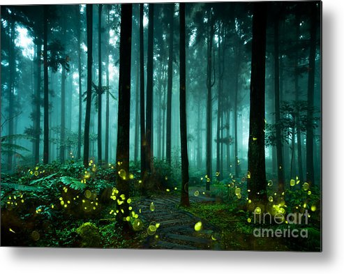 Through Metal Print featuring the photograph Firefly by Htu