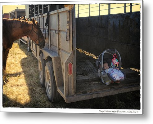 Metal Print featuring the photograph 8789 by Mary Williams Hyde