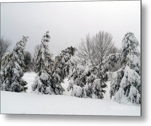 Snow Metal Print featuring the photograph Whoville by Lynellen Nielsen