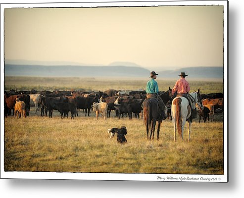 Metal Print featuring the photograph 1249 by Mary Williams Hyde