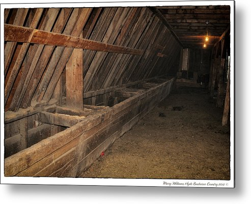 Metal Print featuring the photograph 6417 by Mary Williams Hyde