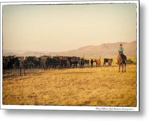Metal Print featuring the photograph 6564 by Mary Williams Hyde