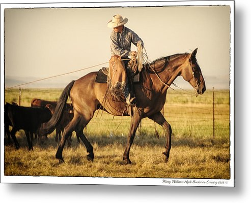 Metal Print featuring the photograph 6771 by Mary Williams Hyde