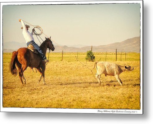 Metal Print featuring the photograph 7352 by Mary Williams Hyde