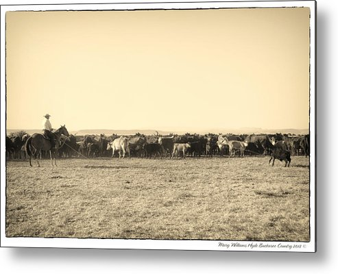Metal Print featuring the photograph 7419 by Mary Williams Hyde