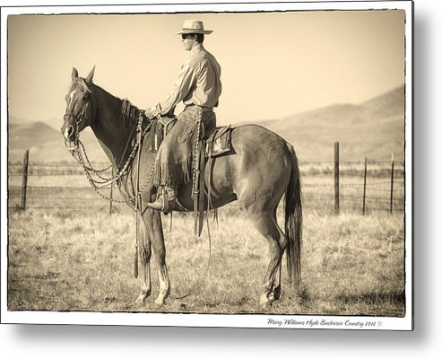 Metal Print featuring the photograph 7493 by Mary Williams Hyde
