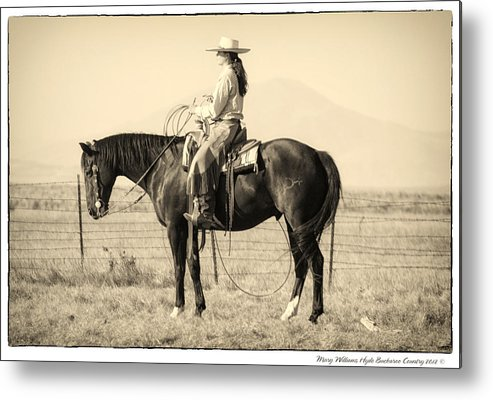 Metal Print featuring the photograph 7582 by Mary Williams Hyde