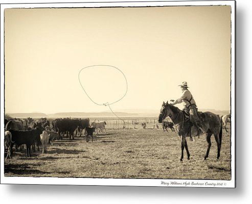 Metal Print featuring the photograph 7906 by Mary Williams Hyde