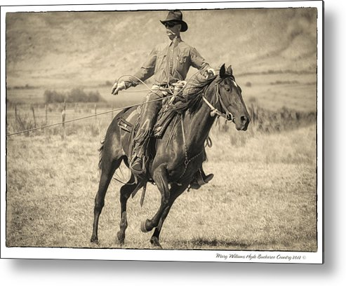 Metal Print featuring the photograph 8753 by Mary Williams Hyde