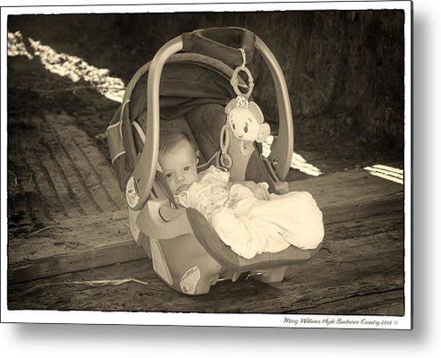 Metal Print featuring the photograph 8787 by Mary Williams Hyde