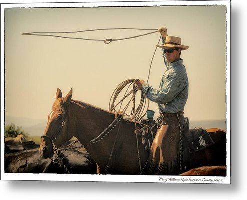 Metal Print featuring the photograph 8795 by Mary Williams Hyde
