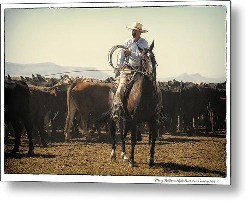 Metal Print featuring the photograph 8862 by Mary Williams Hyde